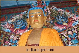 Blue Eyed Buddha, Darjeeling Tour Packages