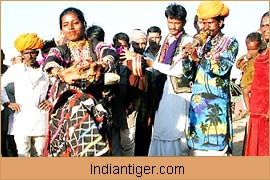 Cultural Dance, Rajasthan Tours & Travels
